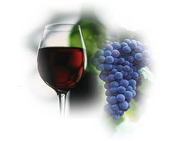 Красное вино – напиток, который более полезен для пищеварения, чем кефир