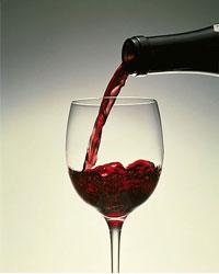 Фестиваль сербского вина
