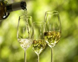 Вино меньше всего способствует сохранению молодости