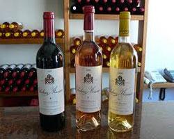 Винодельня «Château Musar»