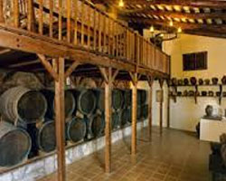 В планах винодельни «Torres» расширение ассортимента