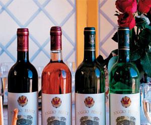 Вино для начинающих коллекционеров: главные правила при коллекционировании