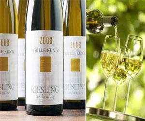 Немецкие вина и винные регионы