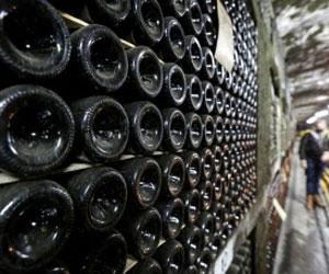 Древний Херсонес: вино из винограда, сохранившегося с тех времен, будут производить в Севастополе