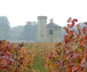 Замковые вина – гордость французов!
