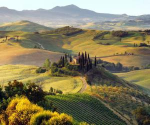 Виноделие в Италии